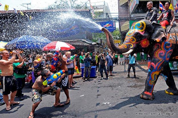 elephant songkran