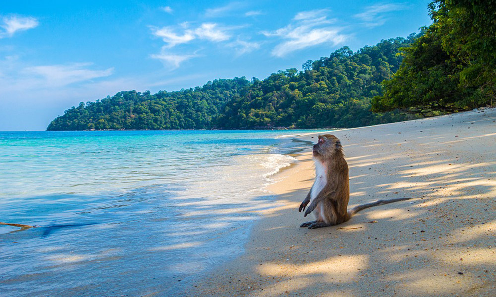 The-Best-Beaches-in-Thailand---Gay