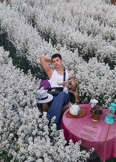 Flower-Gardens-in-Chiang-Mai