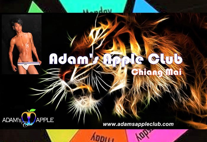 Adam's-Apple-Club-The-Only-Gay-Go-Go-Boys-Show-in-Chiang-Mai