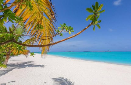 Cheap-Private-Island-Gay-Hotel-Maldives-The-Standard,-Huruvalhi-Maldives
