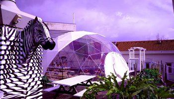 Cool-Hostel-Near-Lisbon-Gay-Sauna-Trombeta-Bath-Sunset-Destination-Hostel