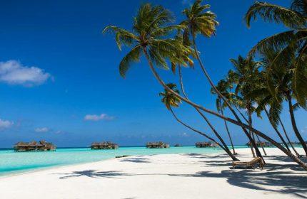 Find-Cheap-Beachfront-Gay-Hotel-Maldives-Gili-Lankanfushi-Maldives