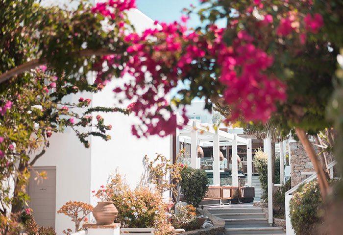 Find-Luxury-Pool-Suite-for-Six-People-in-Mykonos-Town-Gayborhood-Semeli-Hotel-Mykonos