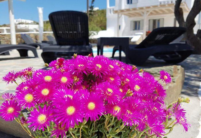 Gay Friendly Hotel Villa Varnali Small Boutique Greece
